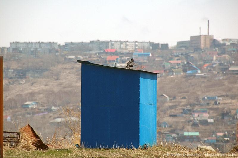 Очистные Петропавловска-Камчатского и лежбище сивучей