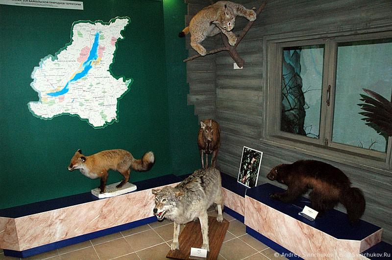 Музей Байкала в Листвянке, новый зал