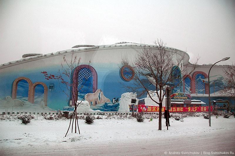 Харбинский полярный океанариум