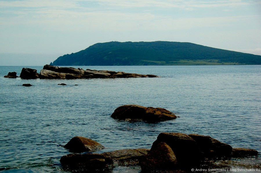Море, нерпы, птици и закат