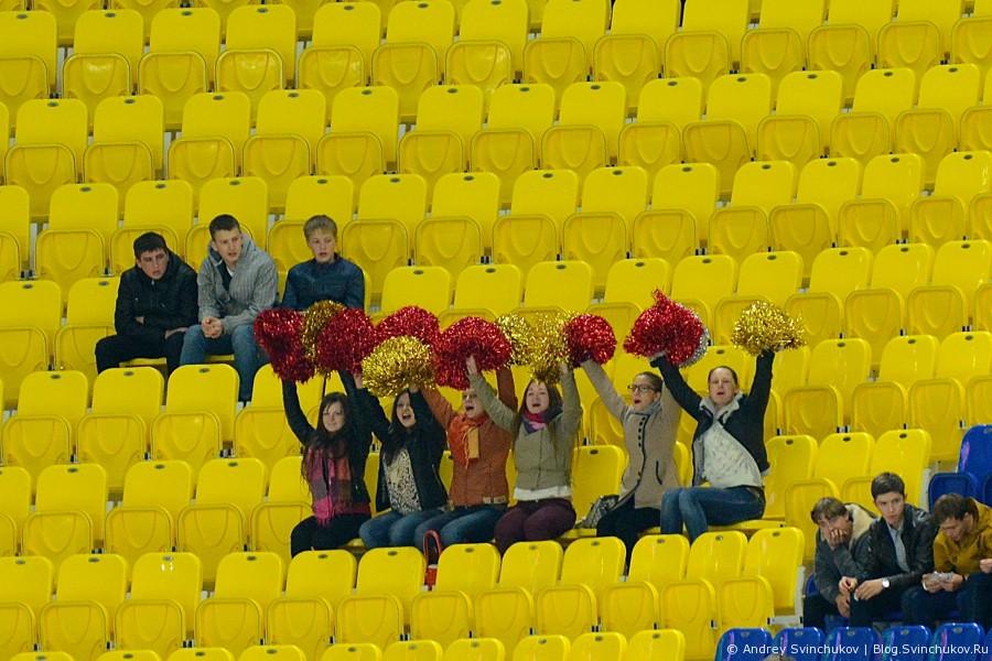 """Кубок России по хоккею с мячом. Матч """"СКА-Нефтяник"""" - """"Сибсельмаш"""""""