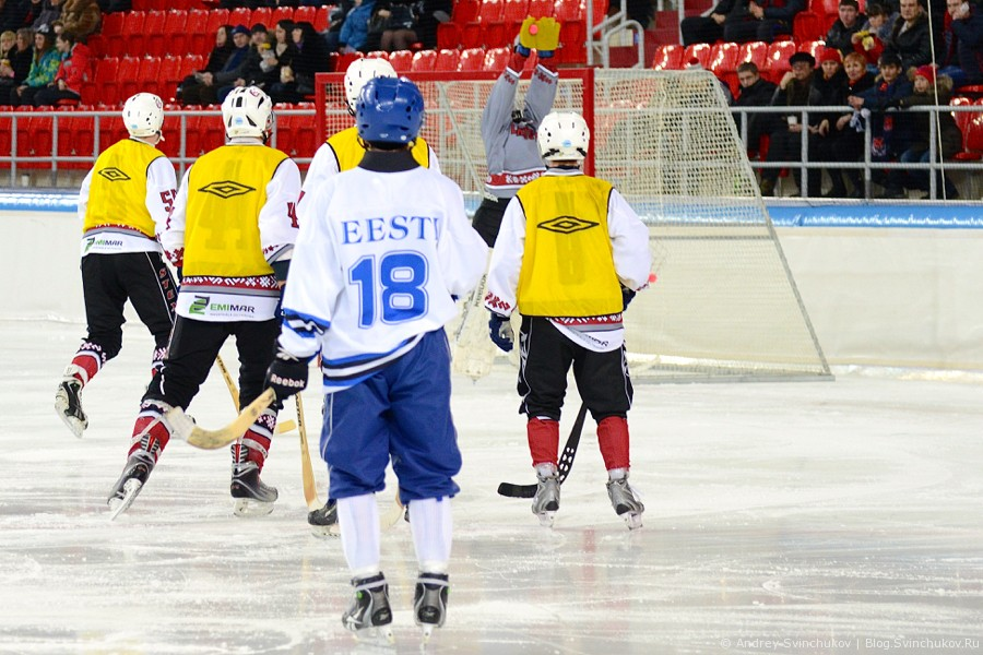 ЧМ-2015 по хоккею с мячом. Финальный матч группы B: Эстония - Латвия