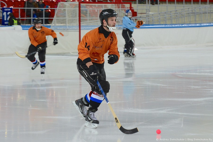 ЧМ-2015 по хоккею с мячом. Матч за третье место: Нидерланды - Венгрия