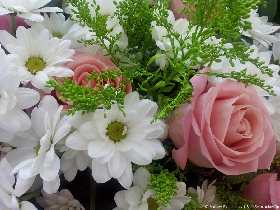 Цветы в женский праздник. Фото со смартфона от МегаФона.