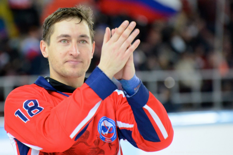 Портреты звезд хоккея с мячом