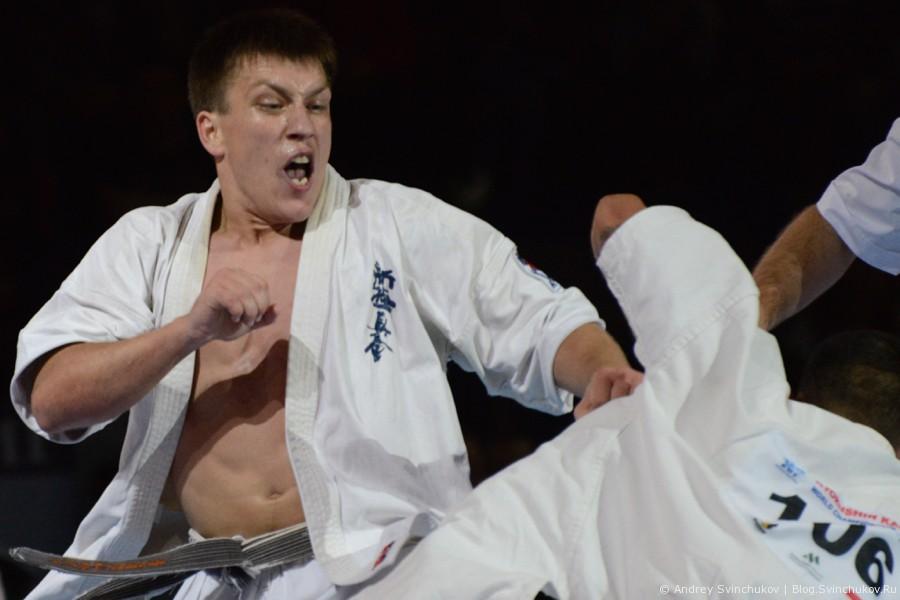 World Championship KWU Kyokushin. День первый — отборочные бои. Часть вторая