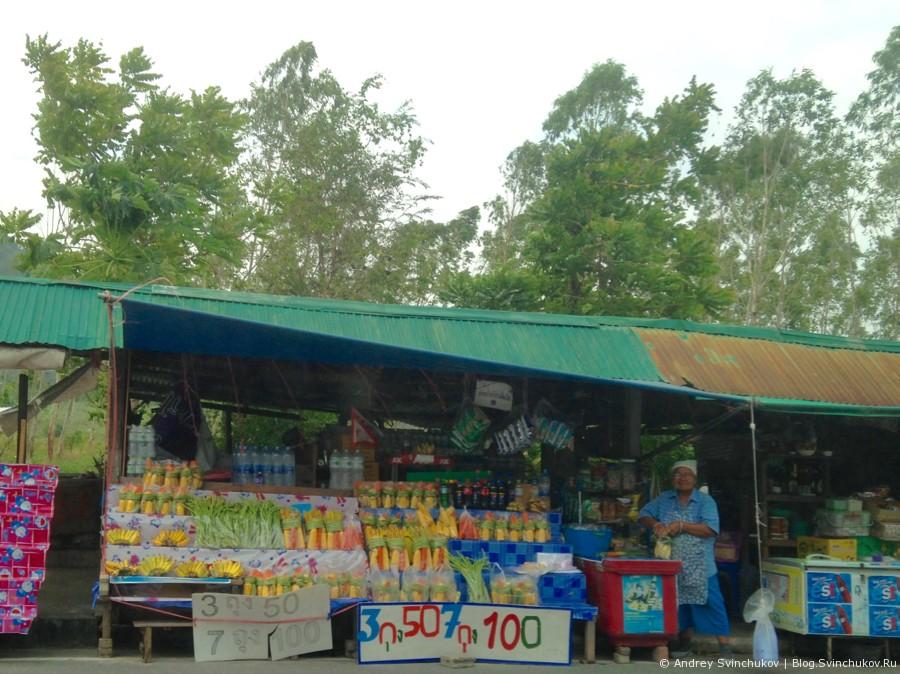 Зоопарк в Таиланде. Обезьянки