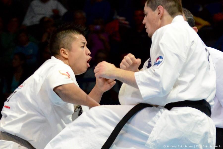 Чемпионат мира по киокусинкай карате. Финал. Мужчины. Часть вторая