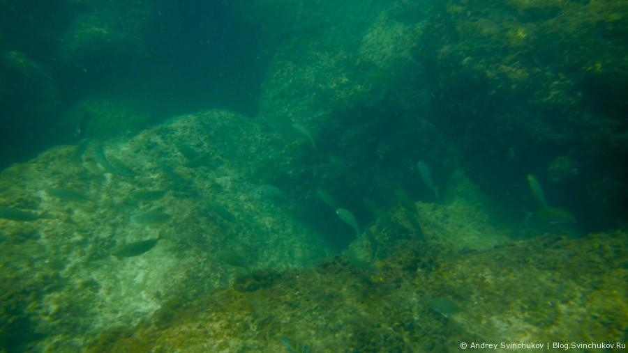 Не глубокое погружение в Средиземное море