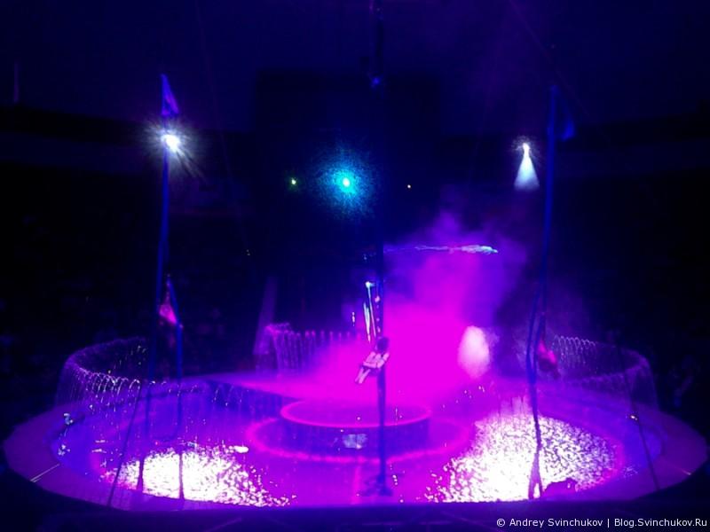 цирк на воде хабаровск барахолка России бесплатные