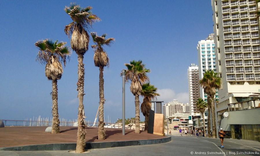 Прогулка по набережной Тель-Авива