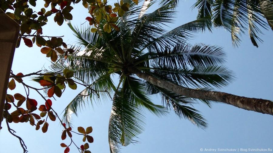 Красивая природа Таиланда