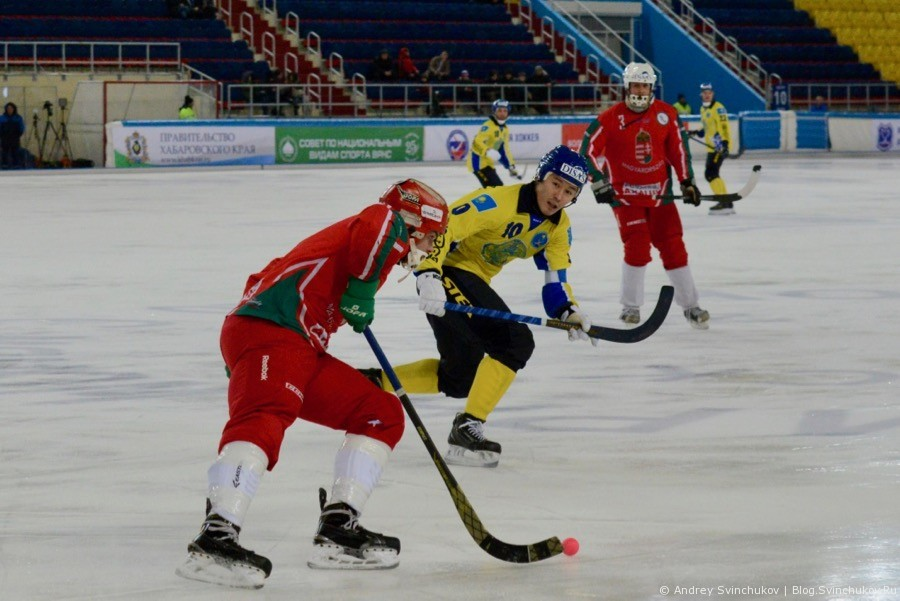 Чемпионат мира по хоккею с мячом — 2018. Матч Венгрия - Казахстан