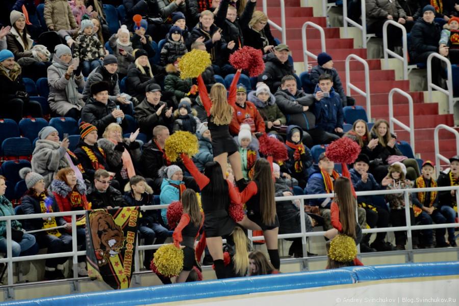 """Хоккей с мячом. Матч """"СКА-Нефтяник"""" - """"Динамо-Москва"""""""