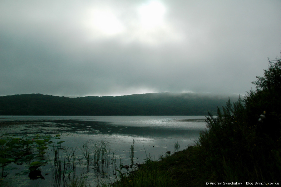 Остров Путятин. Лотосы